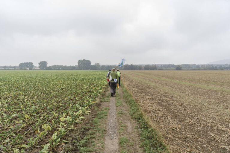 Foto2_Pilgernde-unterwegs_Pilgerbasis-Klimapilgerweg2021-768x512